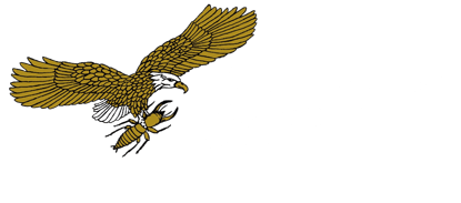 Millennium Termite & Pest Home Inspection Division